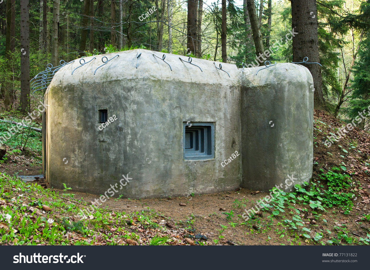 old concrete bunker forest stock photo 77131822 shutterstock