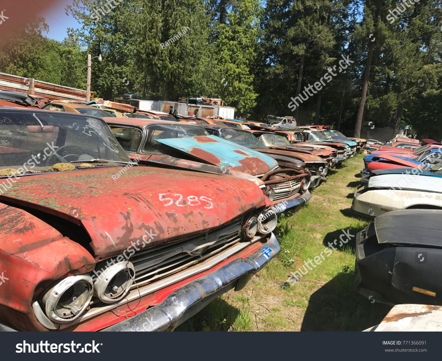Rusty Junkyard Cars Stock Photo 771366091 - Shutterstock