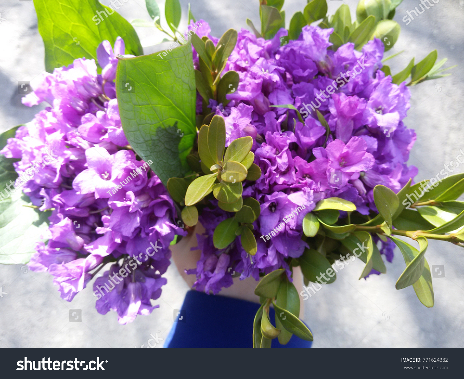 Lovely bouquet as a gift for a beautiful girl ez canvas id 771624382 izmirmasajfo