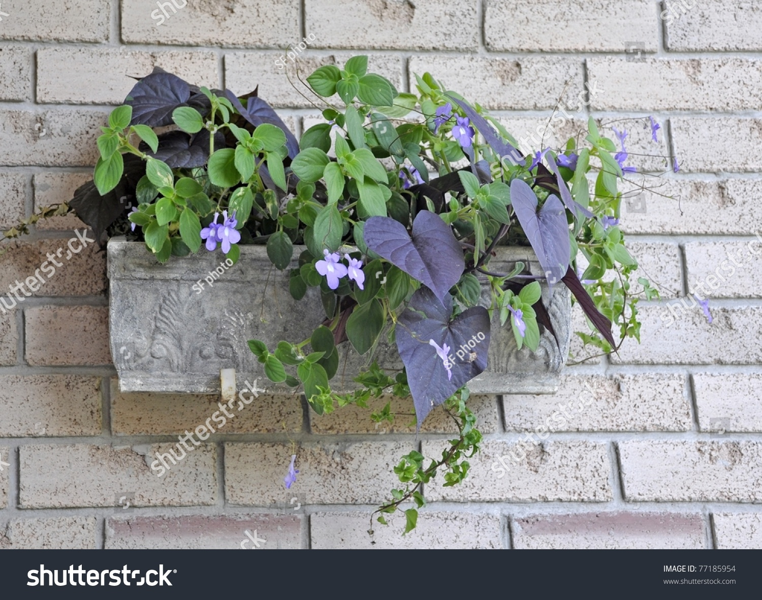 Hanging outdoor planter arrangement annual flowers stock photo edit hanging outdoor planter with an arrangement of annual flowers for the shade izmirmasajfo