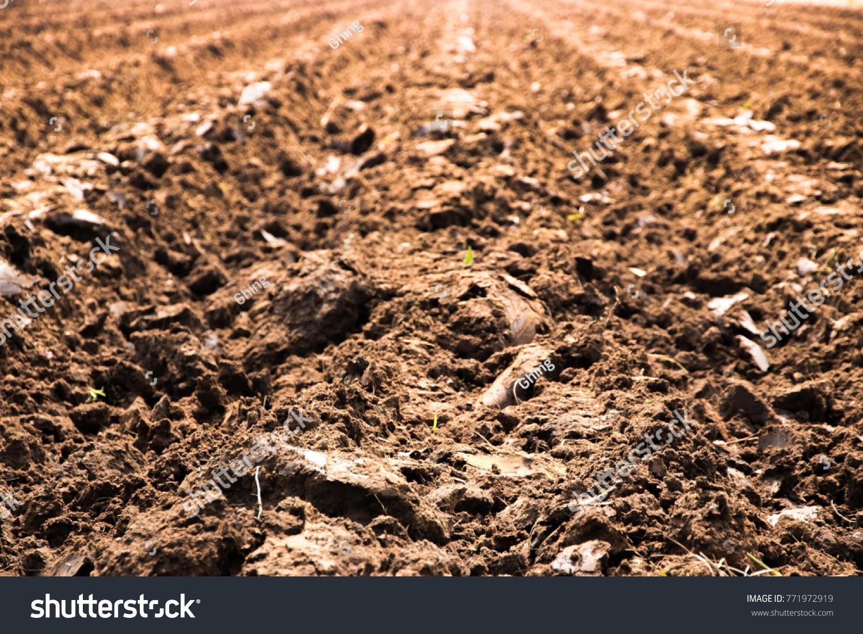 blurred moisture soil dirt farmland prepared stock photo (royalty