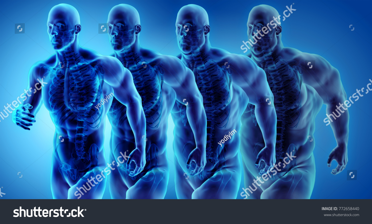 Royalty Free Stock Illustration of Man Transformation Belly Fat ...