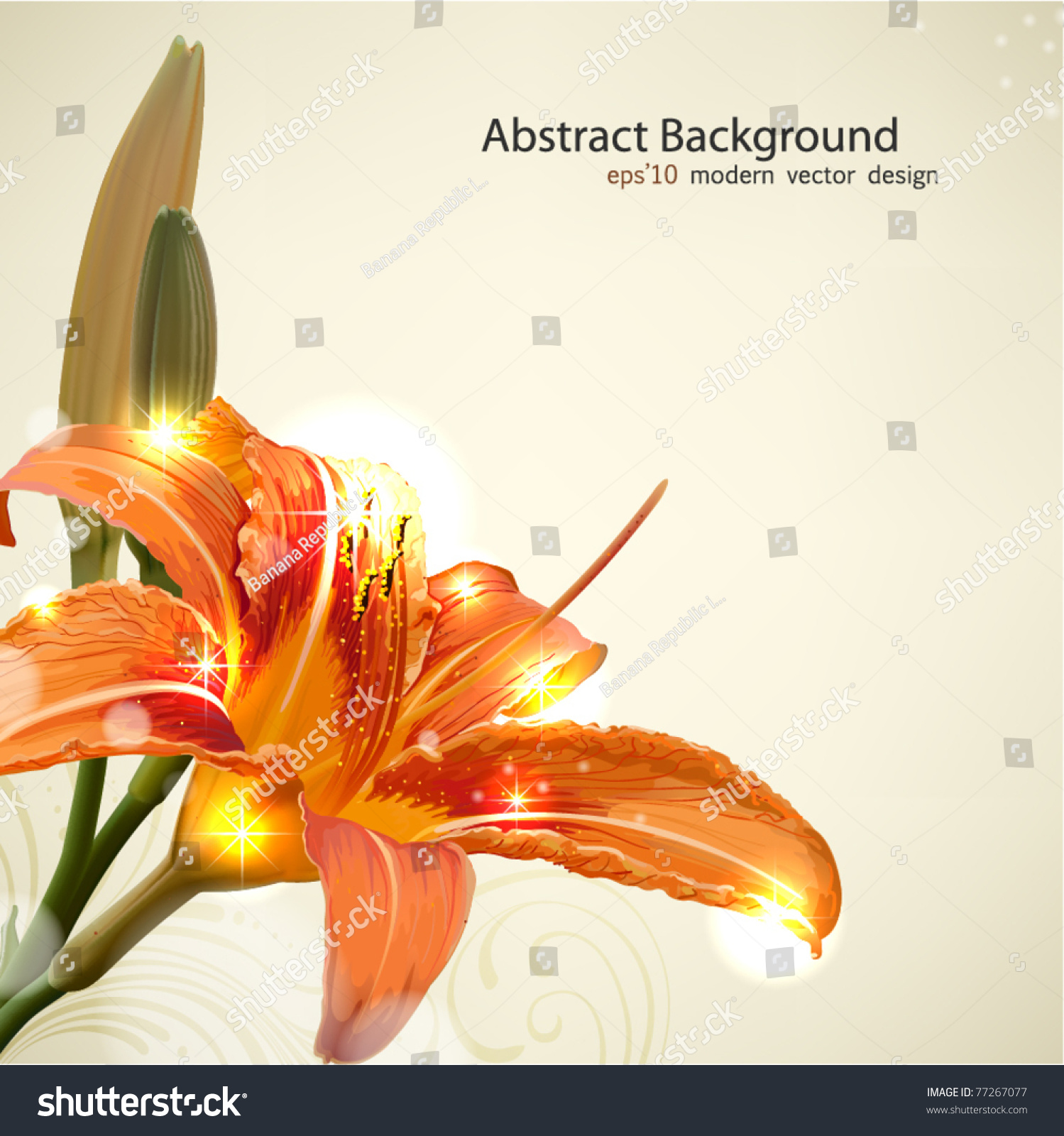 Lily Flower Abstract Vector Background, Wedding Card
