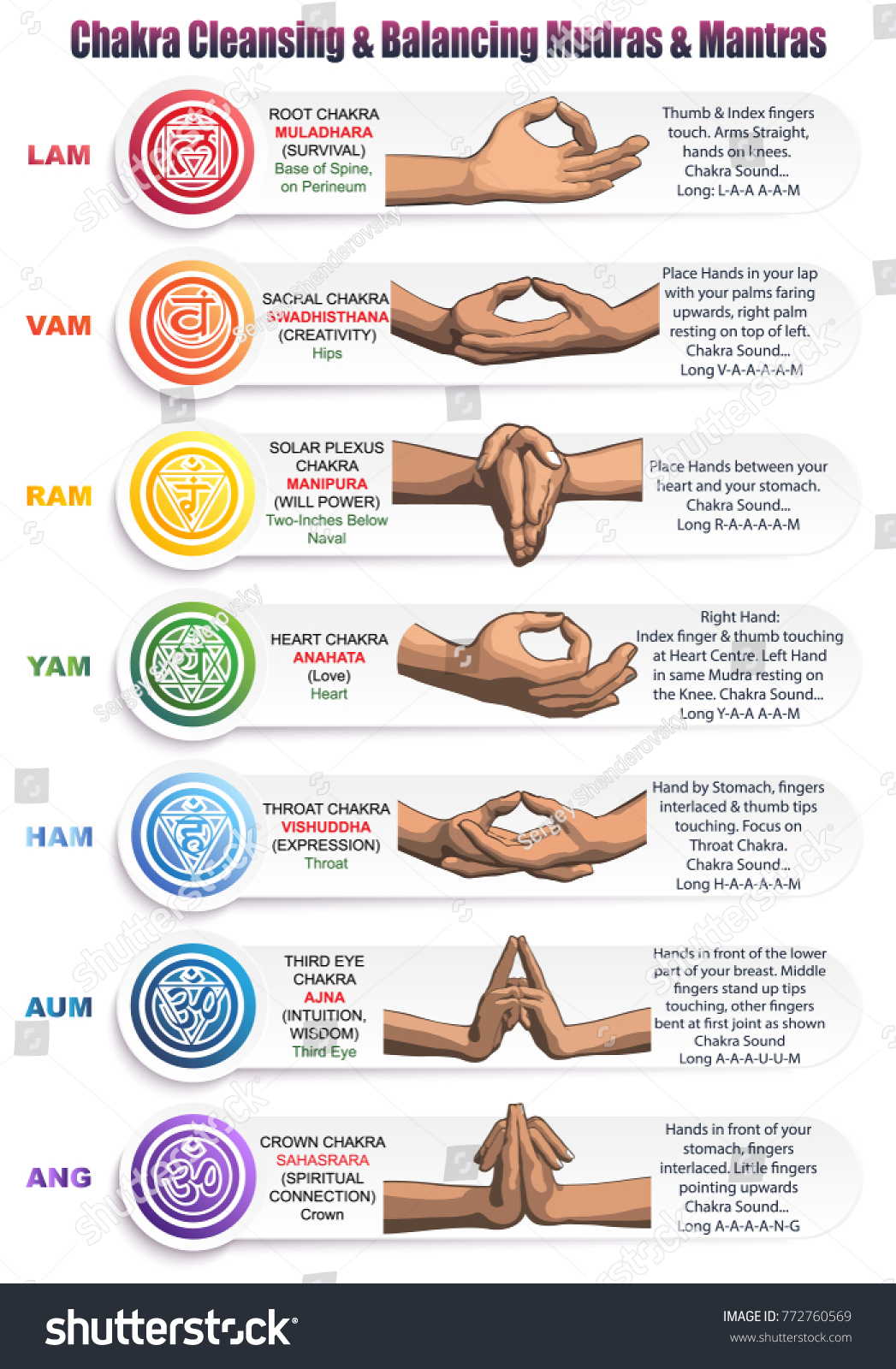 Table meanings colors symbols signs gestures stock vector a table of meanings colors symbols signs and gestures for chakras mudras biocorpaavc Images