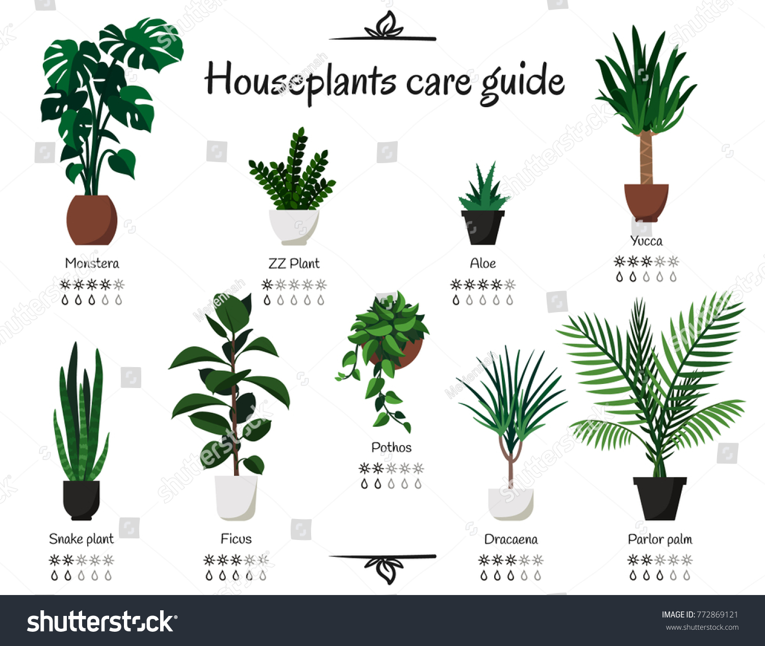 Indoor plant problem solver and care guide | about the garden magazine.