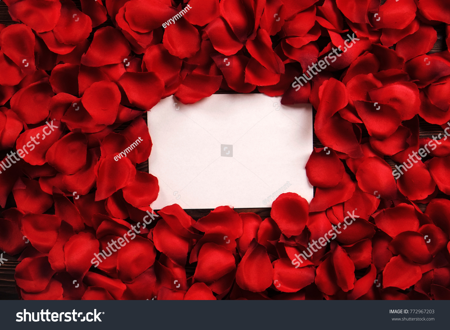 White Blank Card Red Roses Petals Stock Photo (Royalty Free ...