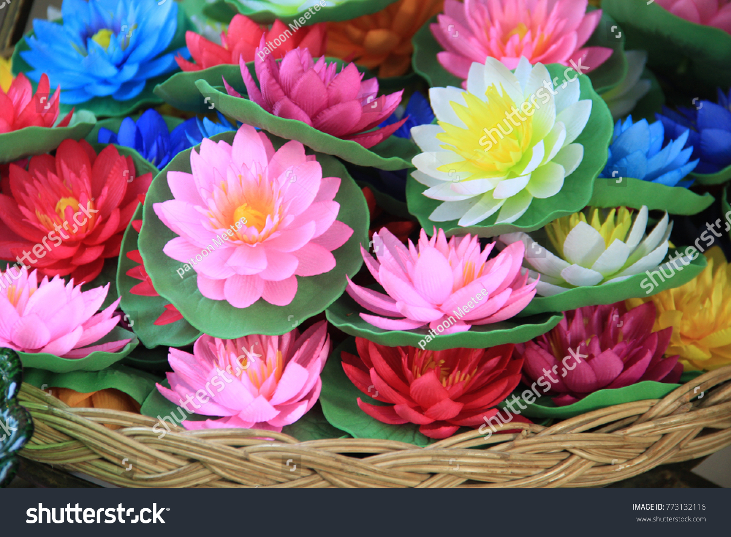 Plastic Lotus Flower Close Blooming Many Stock Photo Edit Now