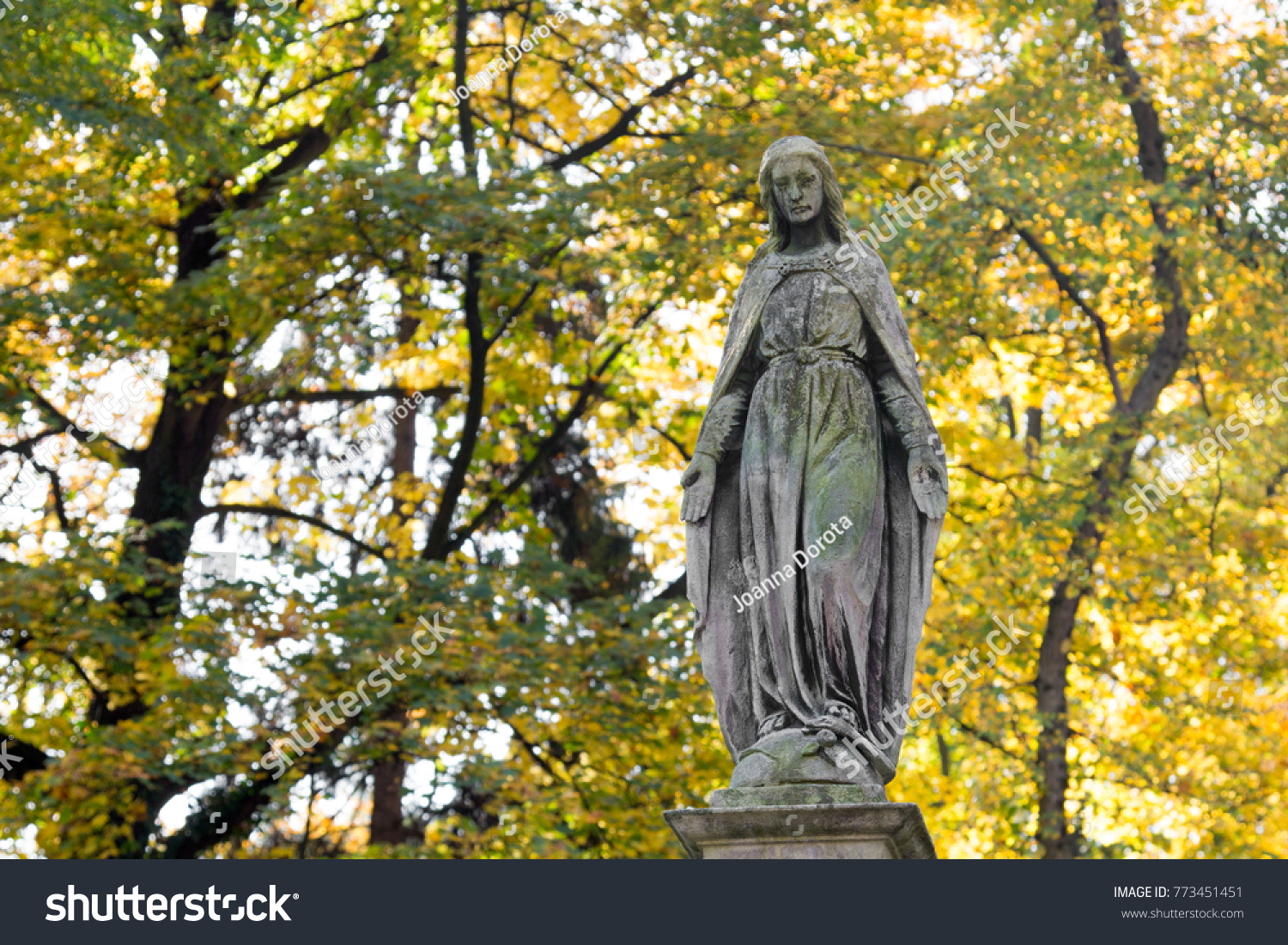 Statue Mary Mother God Autumn Tree Stock Photo Edit Now 773451451