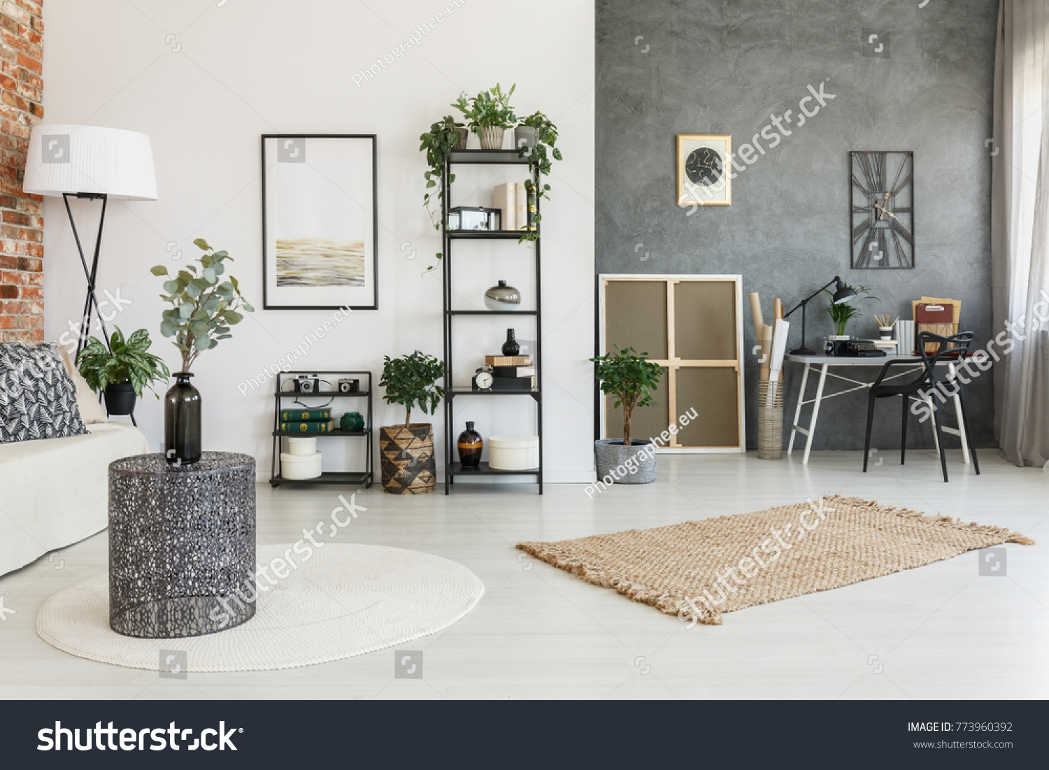 Brown White Carpet Plants Multifunctional Living Stock Photo ...