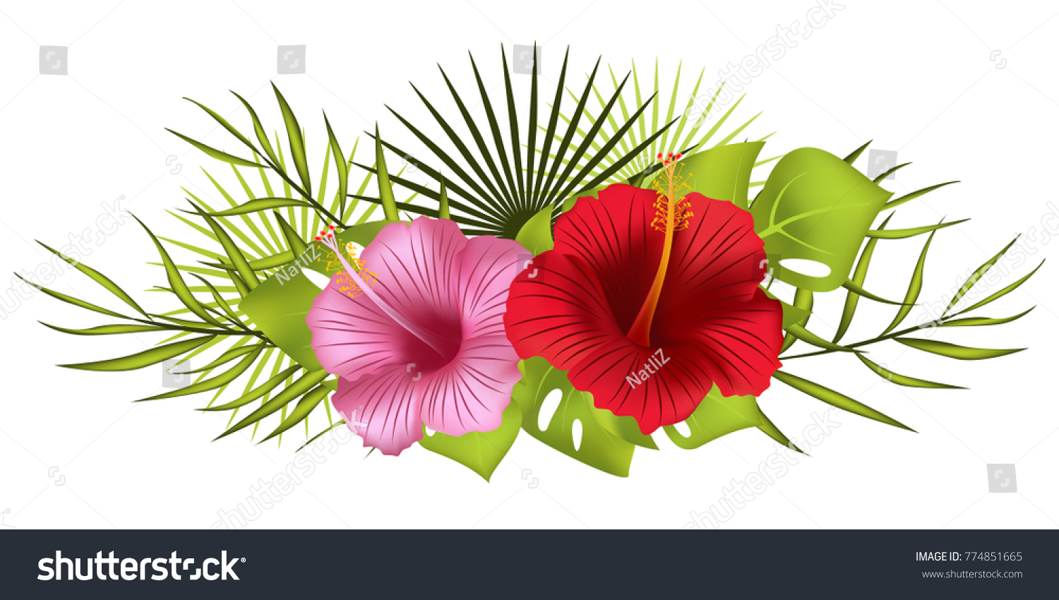 Tropical flowers bouquet hibiscus exotic plants stock vector tropical flowers bouquet hibiscus exotic plants vector illustration izmirmasajfo