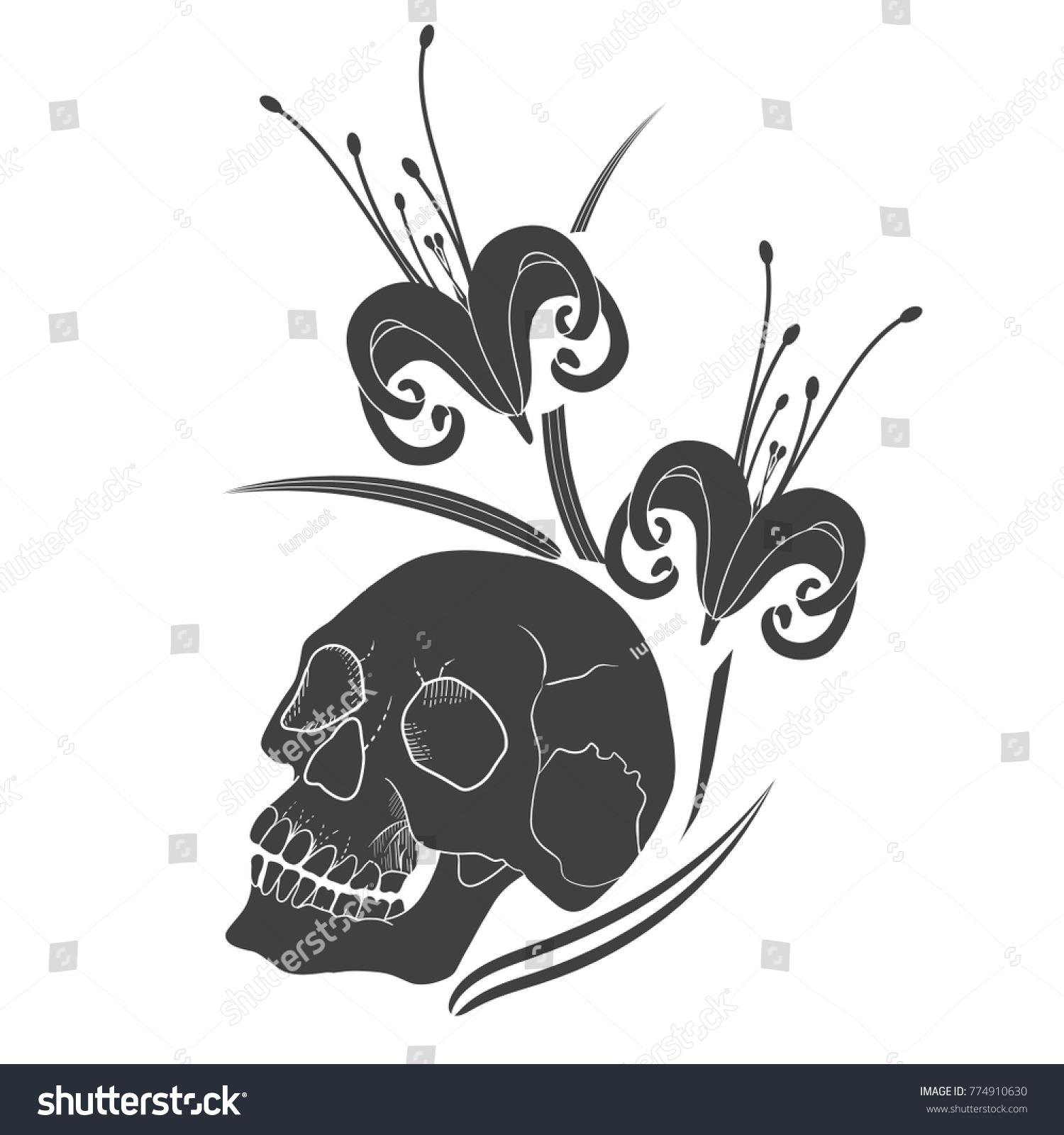 Human Skull Lily Flower Tattoo Vector Stock Vector Royalty Free