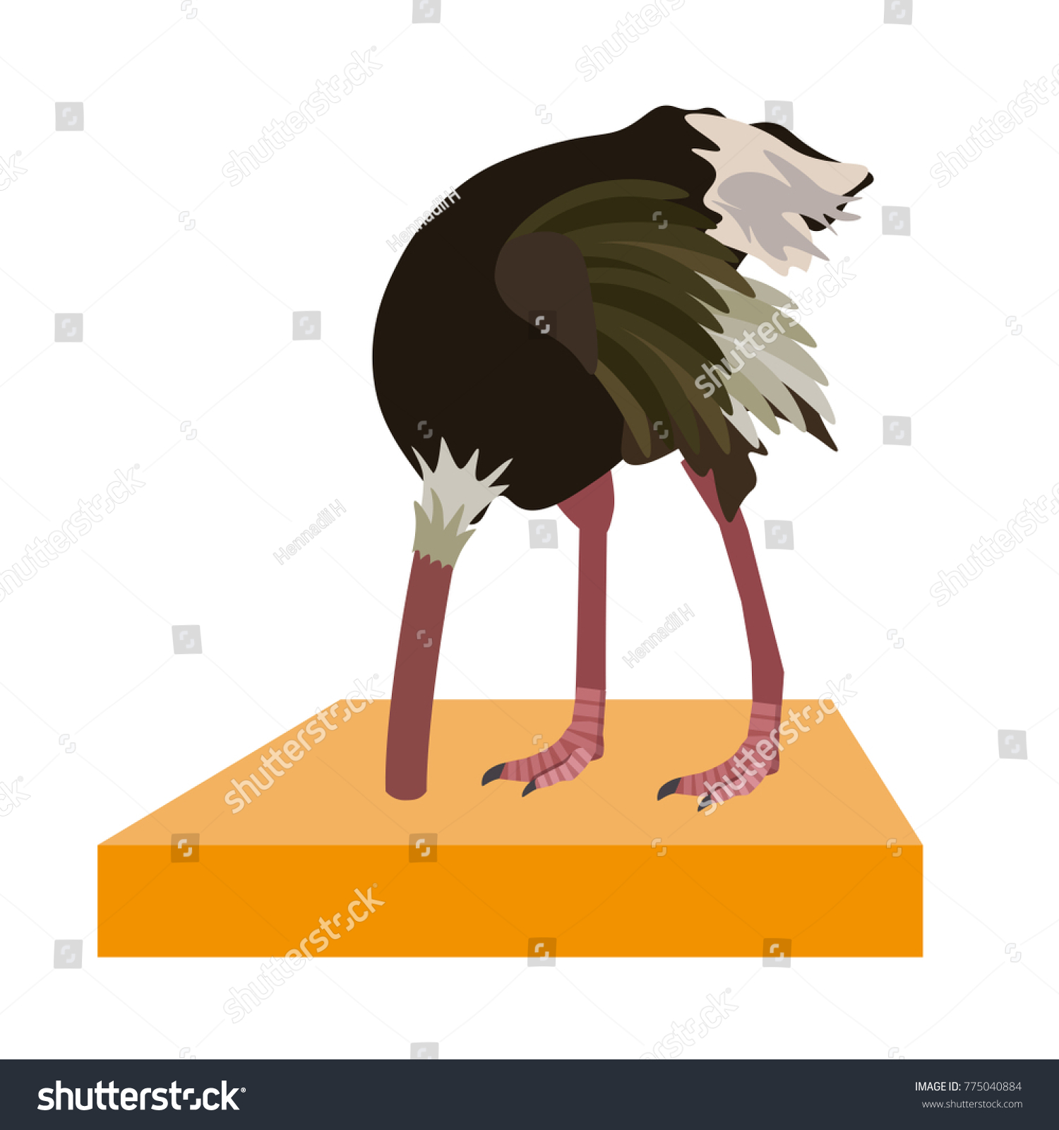 ostrich hide head in sand vector illustration isolated on the white background