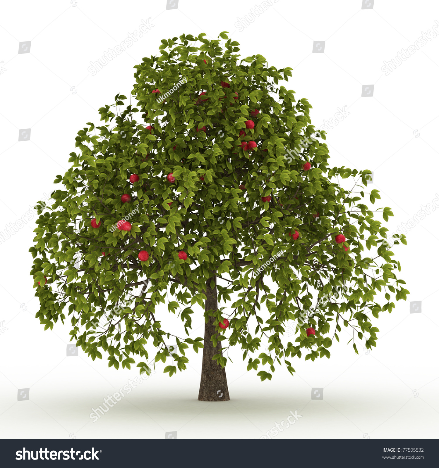 Green Apple Tree Red Apples Isolated Stock Illustration ...
