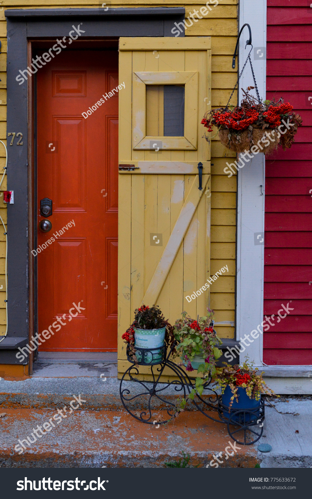 Old Wooden Yellow Screen Door Protects Stock Photo Edit Now