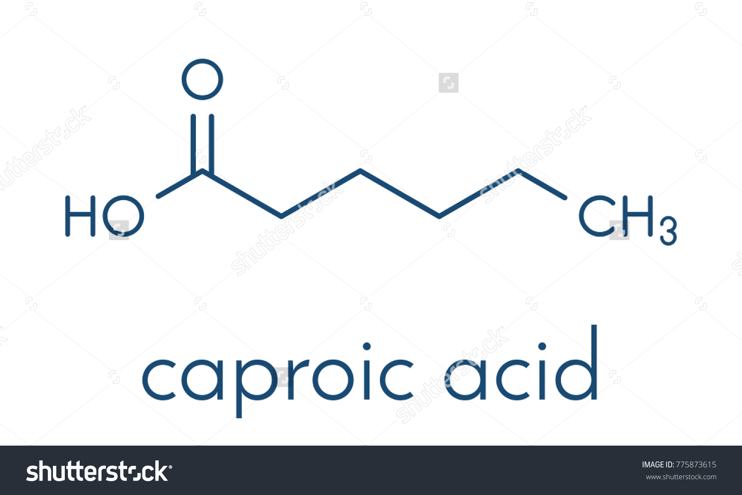 Caproic acid hexanoic acid fatty acid stock vector 775873615 caproic acid hexanoic acid fatty acid molecule salts and esters are called hexanoates pooptronica