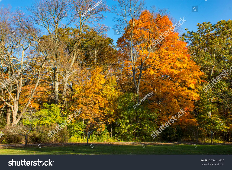 Fall Foliage around New Jersey\'s Skyland Manor / NJ Botanical ...
