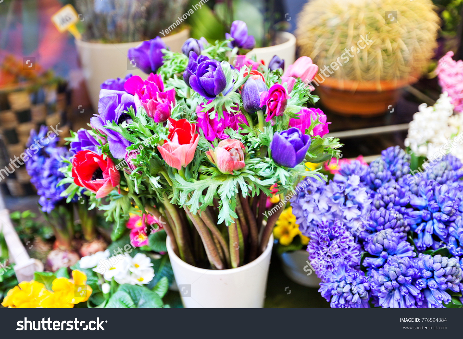 Spring Beautiful Flowers Anemones Flower Shop Stock Photo Edit Now