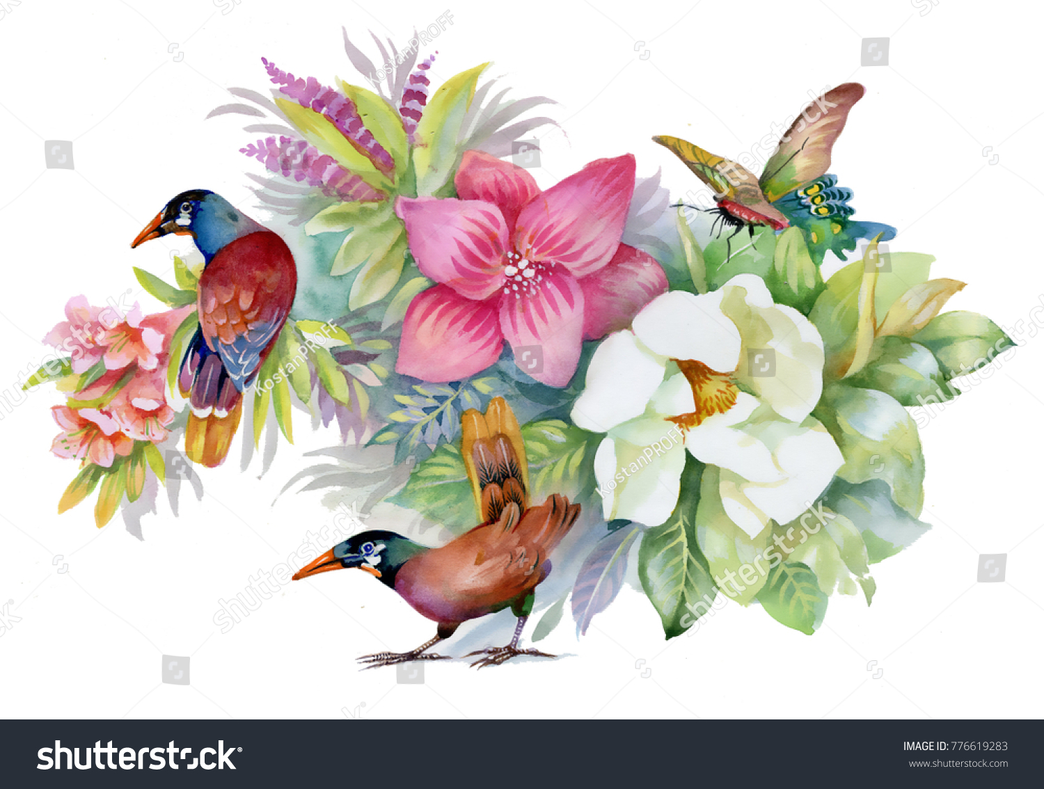 Watercolor Hand Drawn Beautiful Flowers Birds Stock Illustration