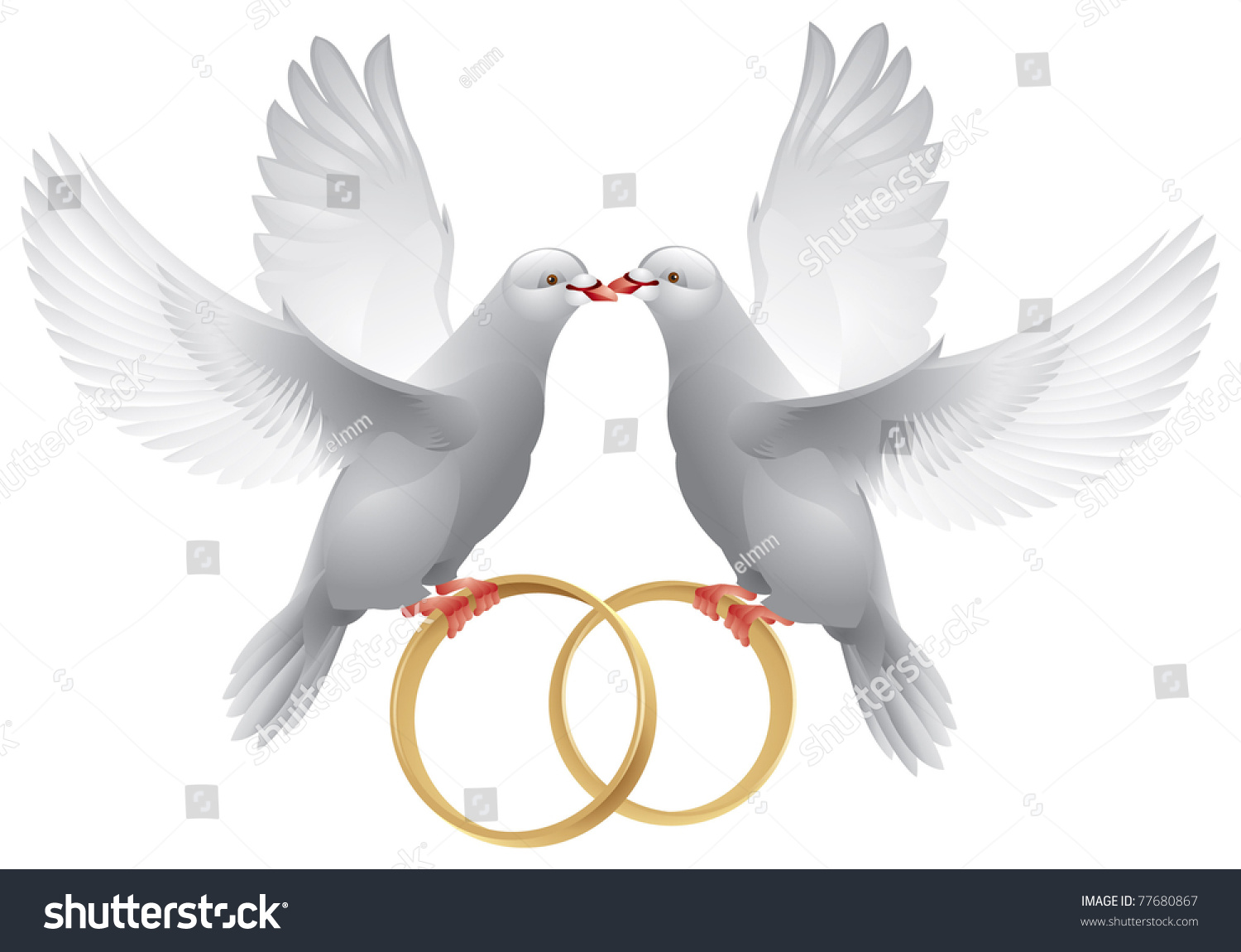 wedding doves rings symbol love wedding stock vector