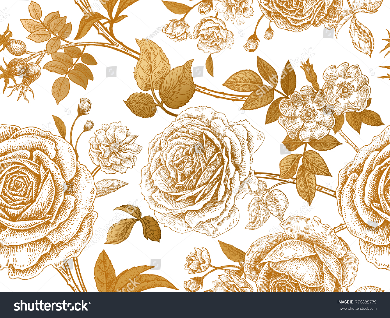Garden Roses Briar Gold Flowers Leaves Stock Vector Royalty Free