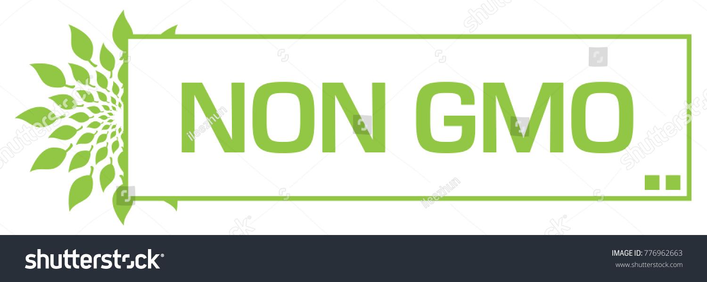 Non gmo concept image text leaves stock illustration 776962663 non gmo concept image with text and leaves symbol buycottarizona Images