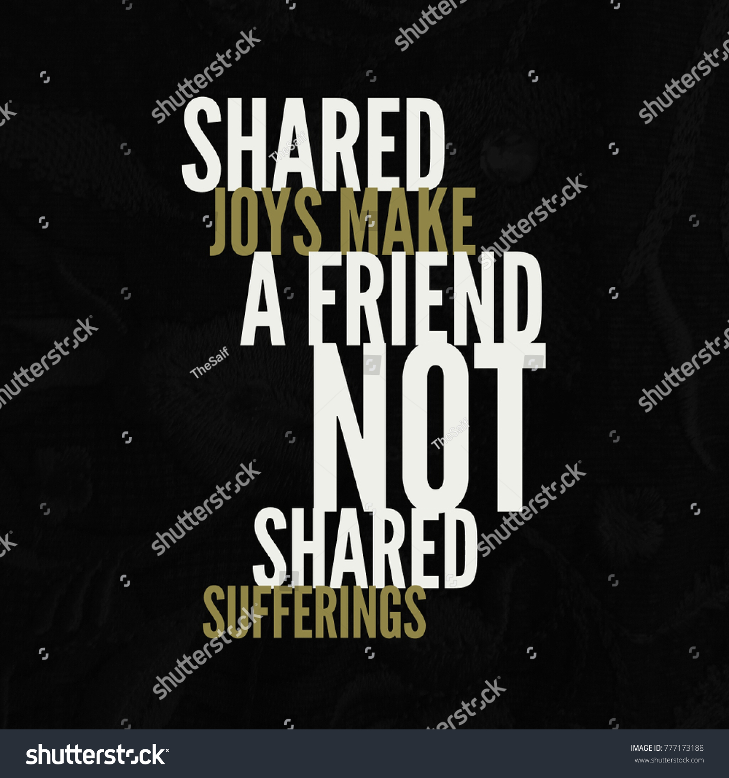 A Quote About Friendship Friendship Quote Best Friend Stock Photo 777173188  Shutterstock