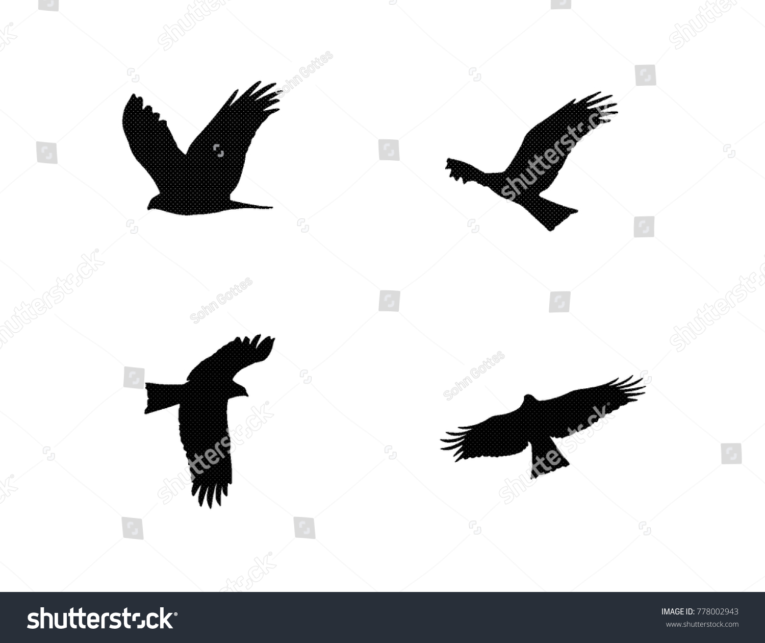 stock-vector-eagle-various-flying-format