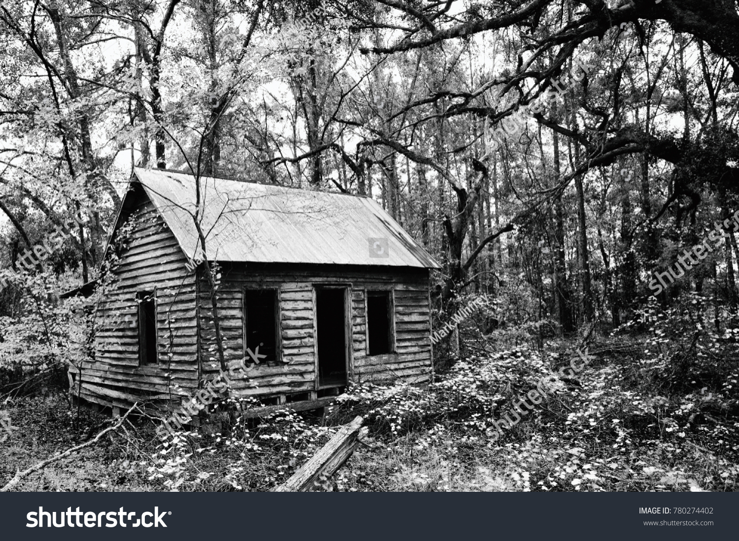 stock-photo-creepy-abandoned-house-deep-