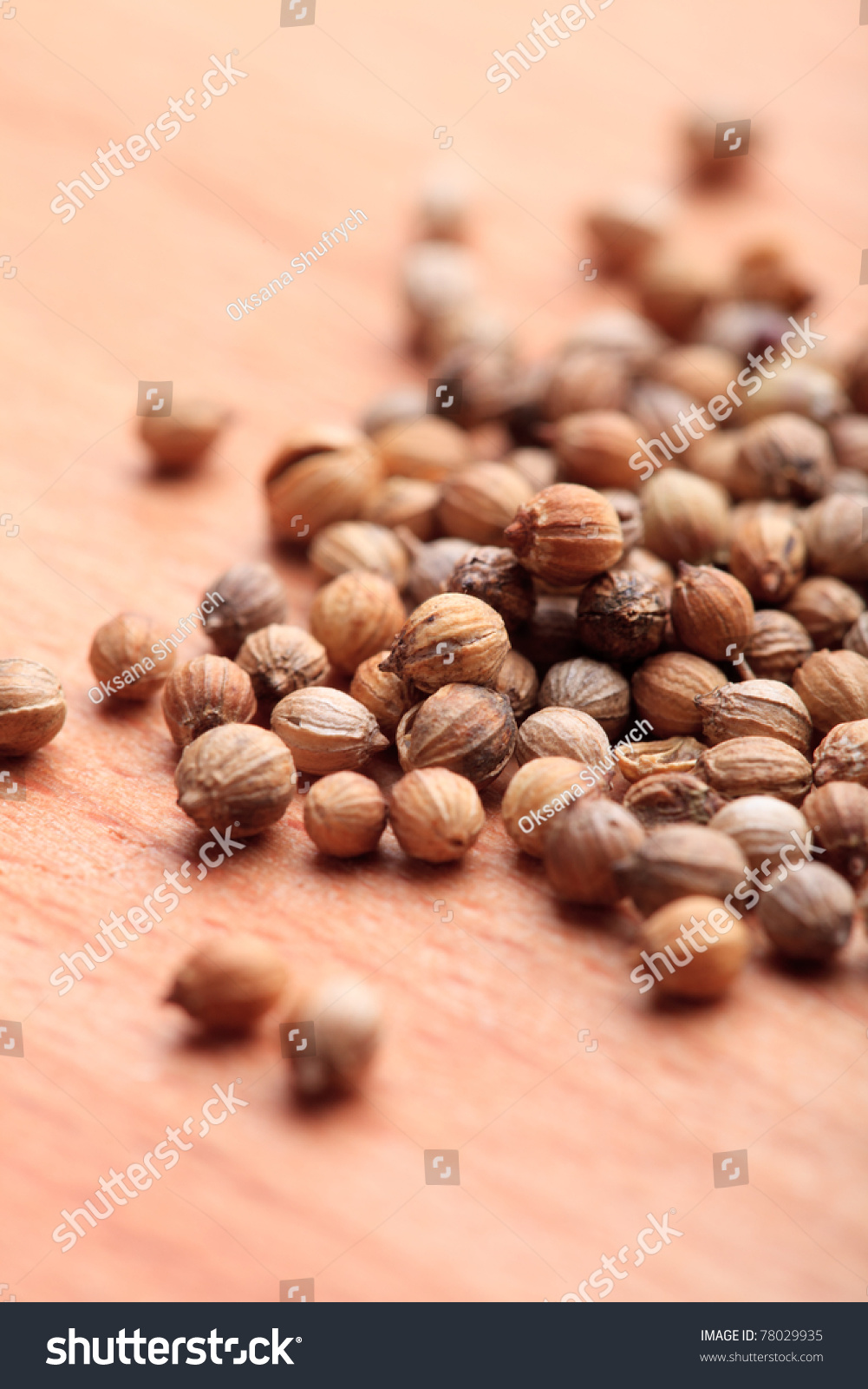 Coriander seeds on wooden table close stock photo