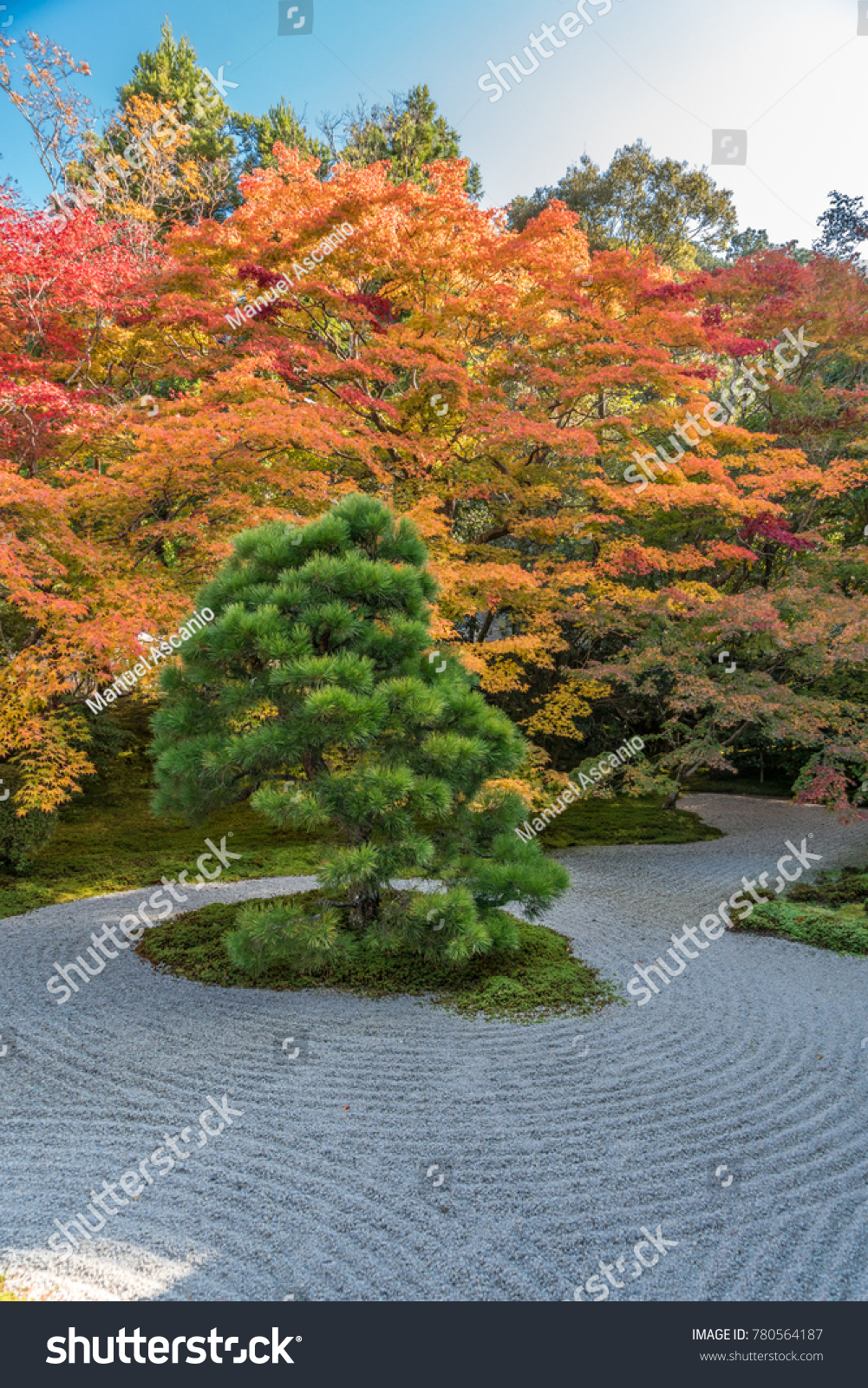 Autumn Leaves Fall Foliage Tenjuan Temple Stock Photo (Royalty Free ...