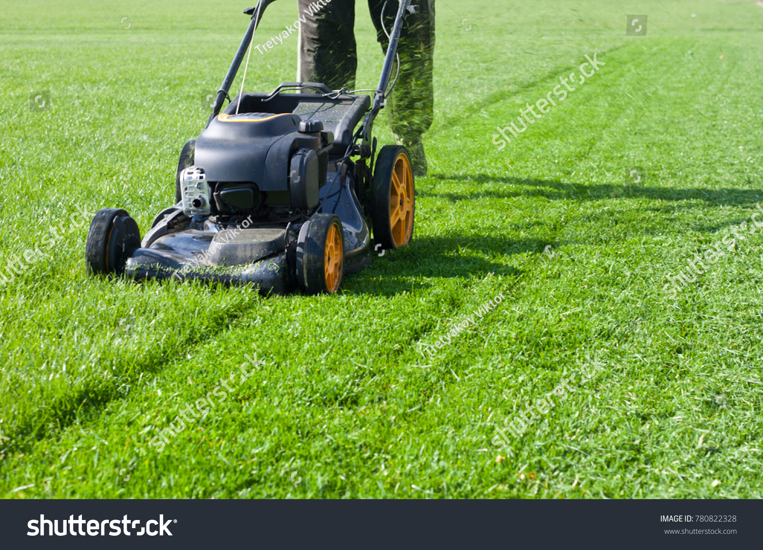 Worker guy shake pour grass from lawn mower bag into wheelbarrow. Garden meadow lawn cutting. Summer works in garden. Static shot.