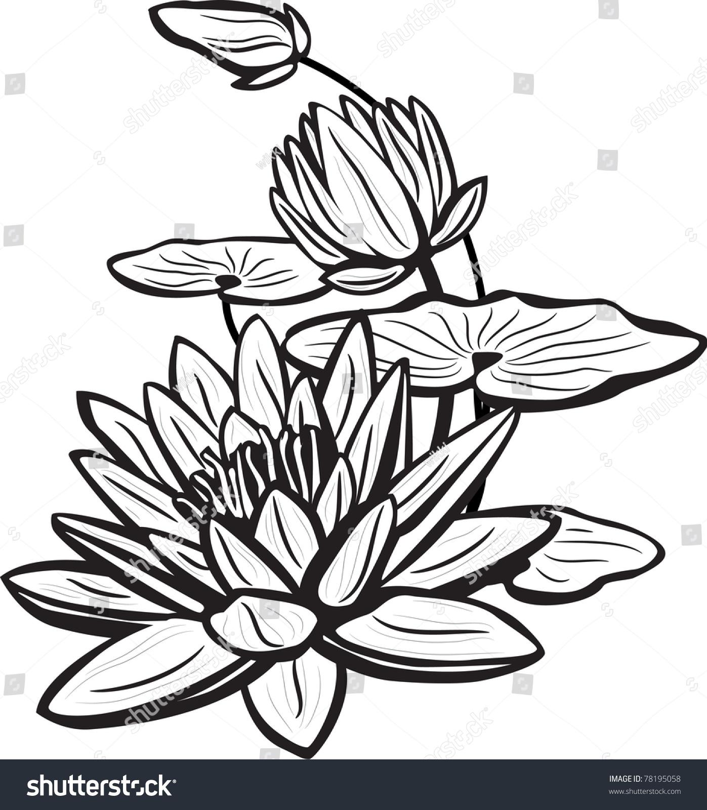 Sketch lotus flowers stock vector royalty free 78195058 shutterstock sketch of lotus flowers izmirmasajfo