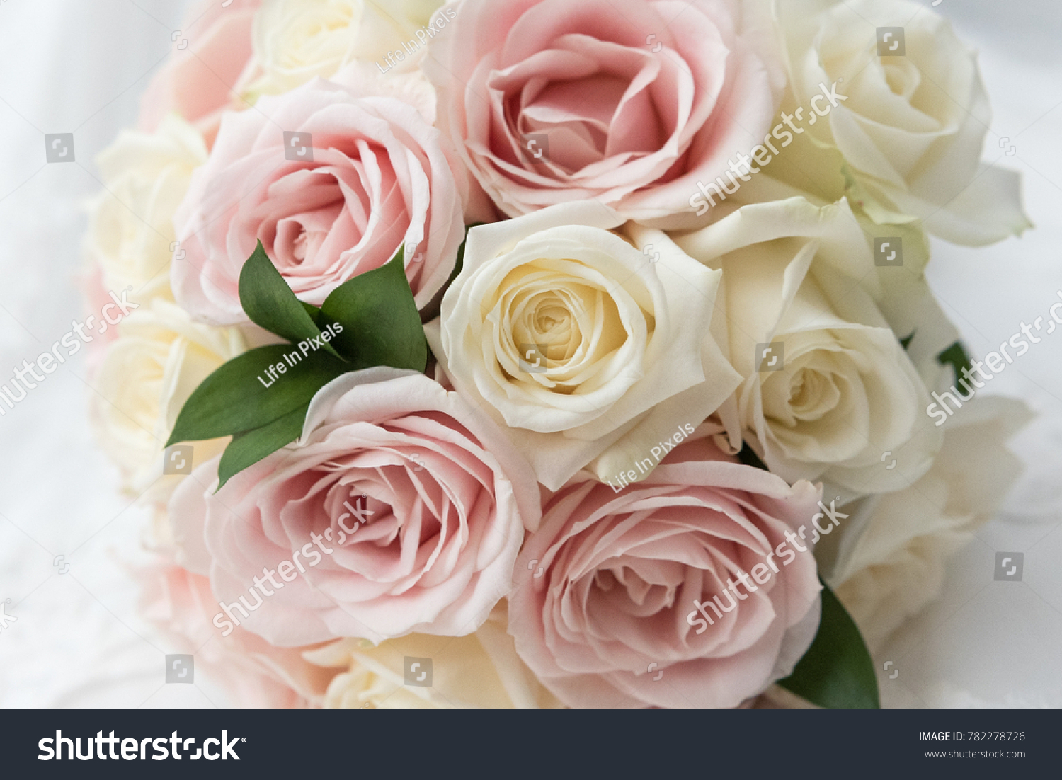 Brides Beautiful Bouquet Of Pink And White Roses On A White Lace
