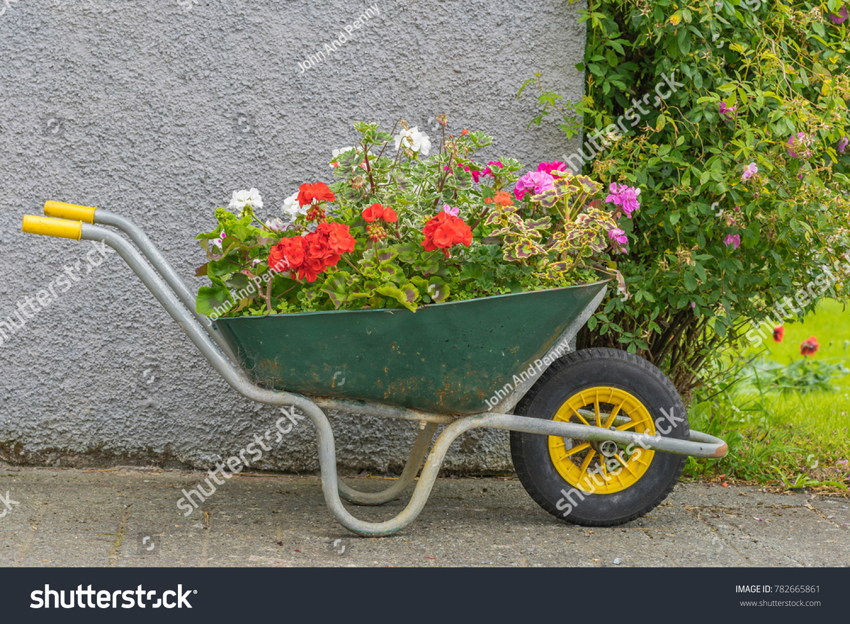 Flower Garden Wheelbarrow Stock Photo 782665861 - Shutterstock
