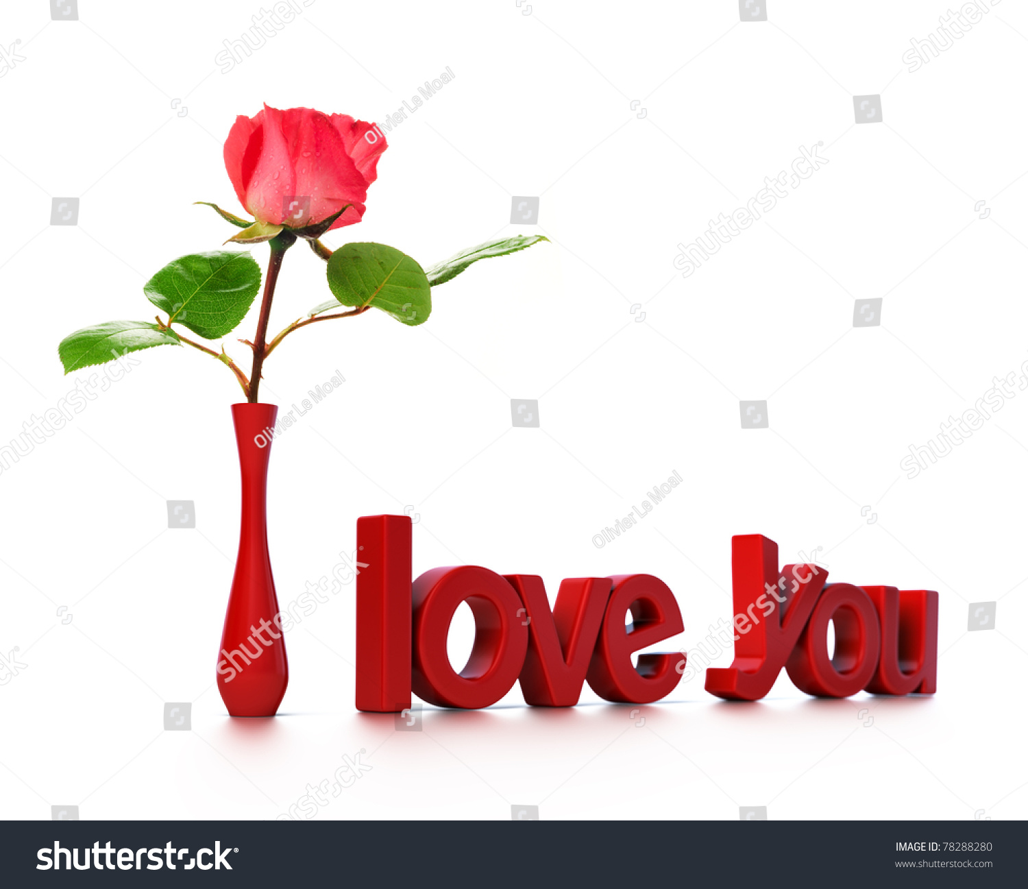 I love you rose photo