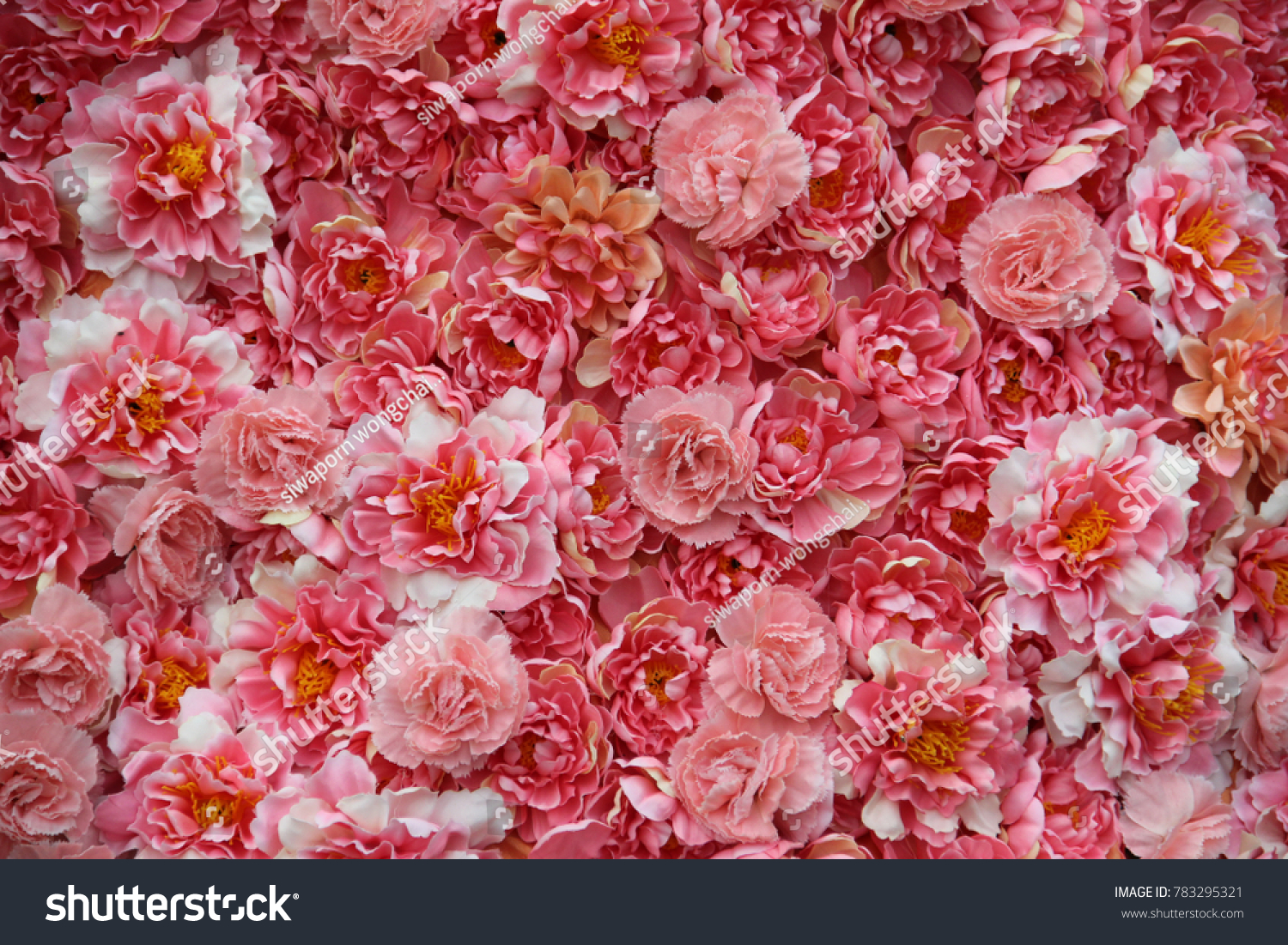 Pink Flowers Aesthetic Background Stock Photo Edit Now 783295321