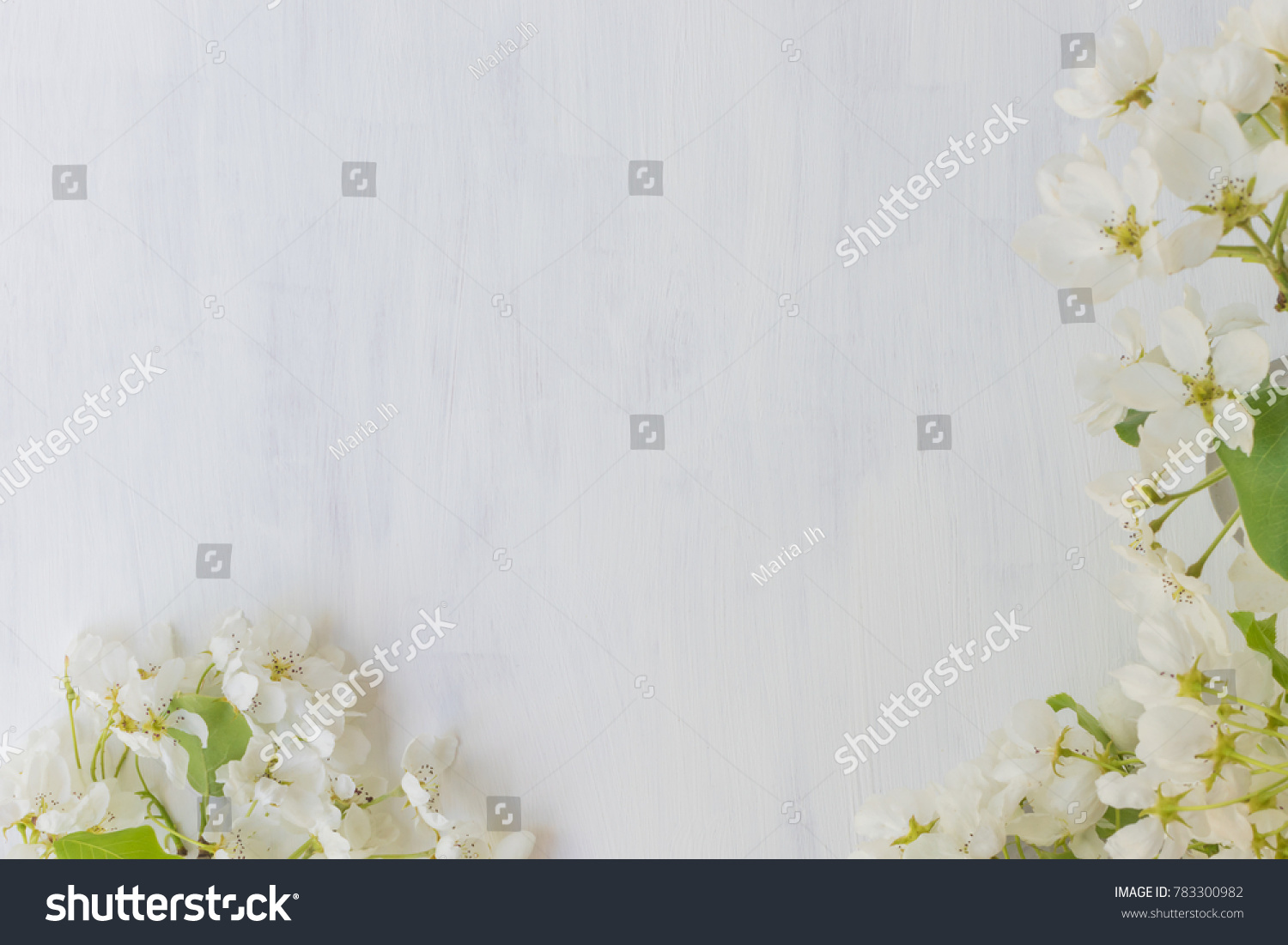White Spring Flowers On A Light Background Empty Space For Your Text