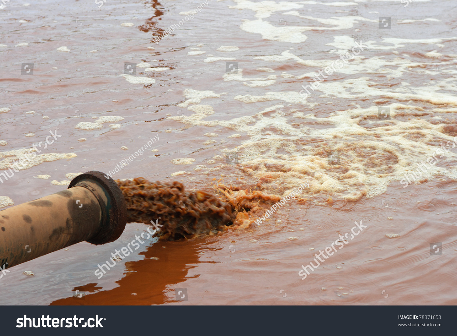 ocean pollution essay conclusion This can lead to a decreased oxygen level in the water, harming fish and other  marine organisms it can also lead to water pollution that can compromise.