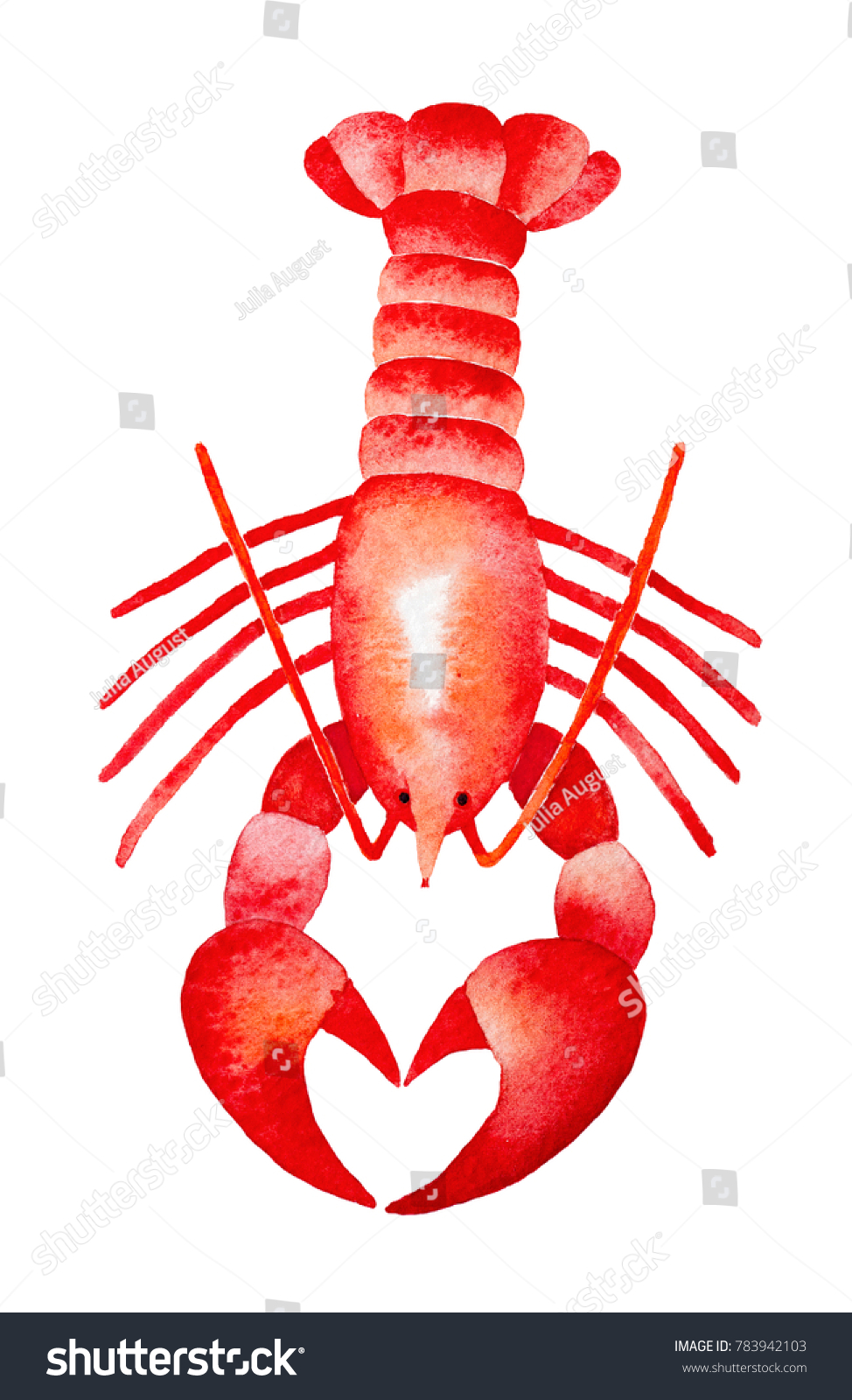 Red Lobster Watercolour Illustration Claws Show Stock Illustration
