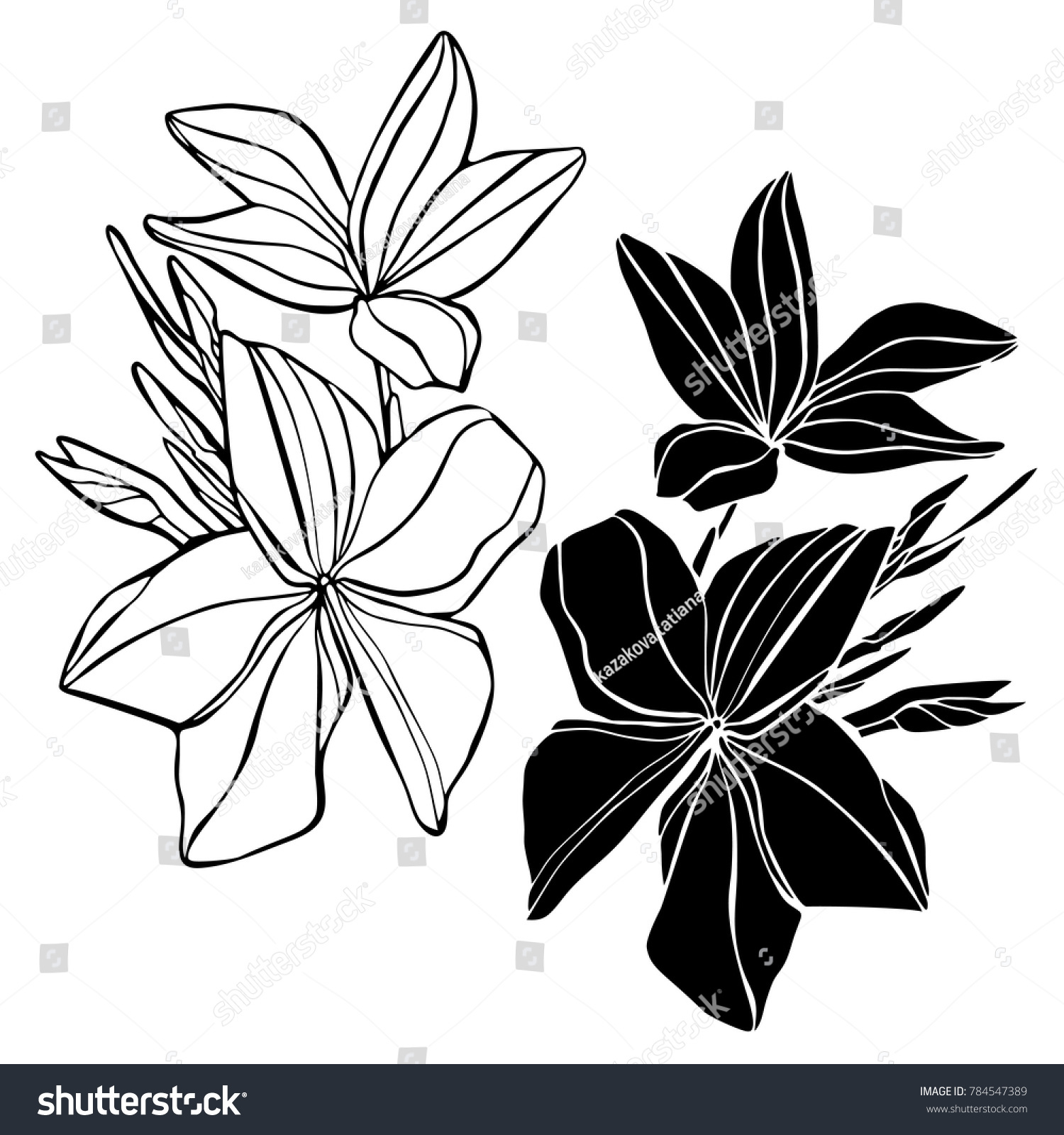 Vector Design Decorative Abstract Tropical Flowers Stock Vector