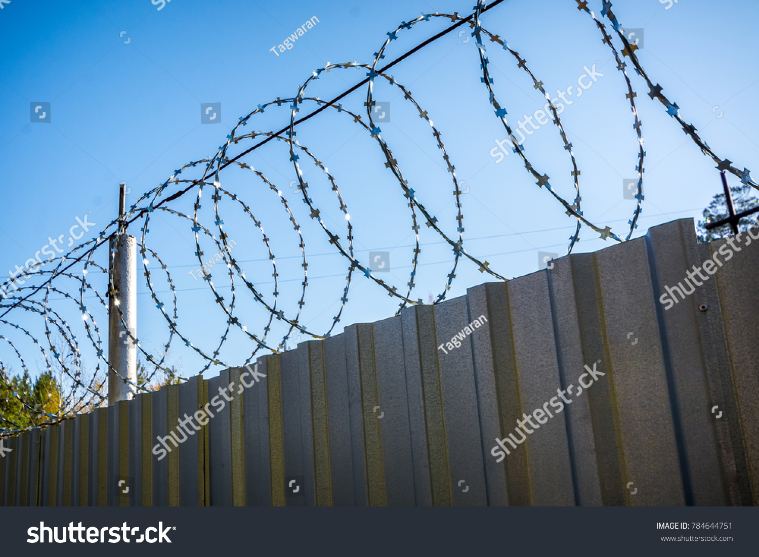 Barbed Wire On Fence Protect Prying Stock Photo (Royalty Free ...