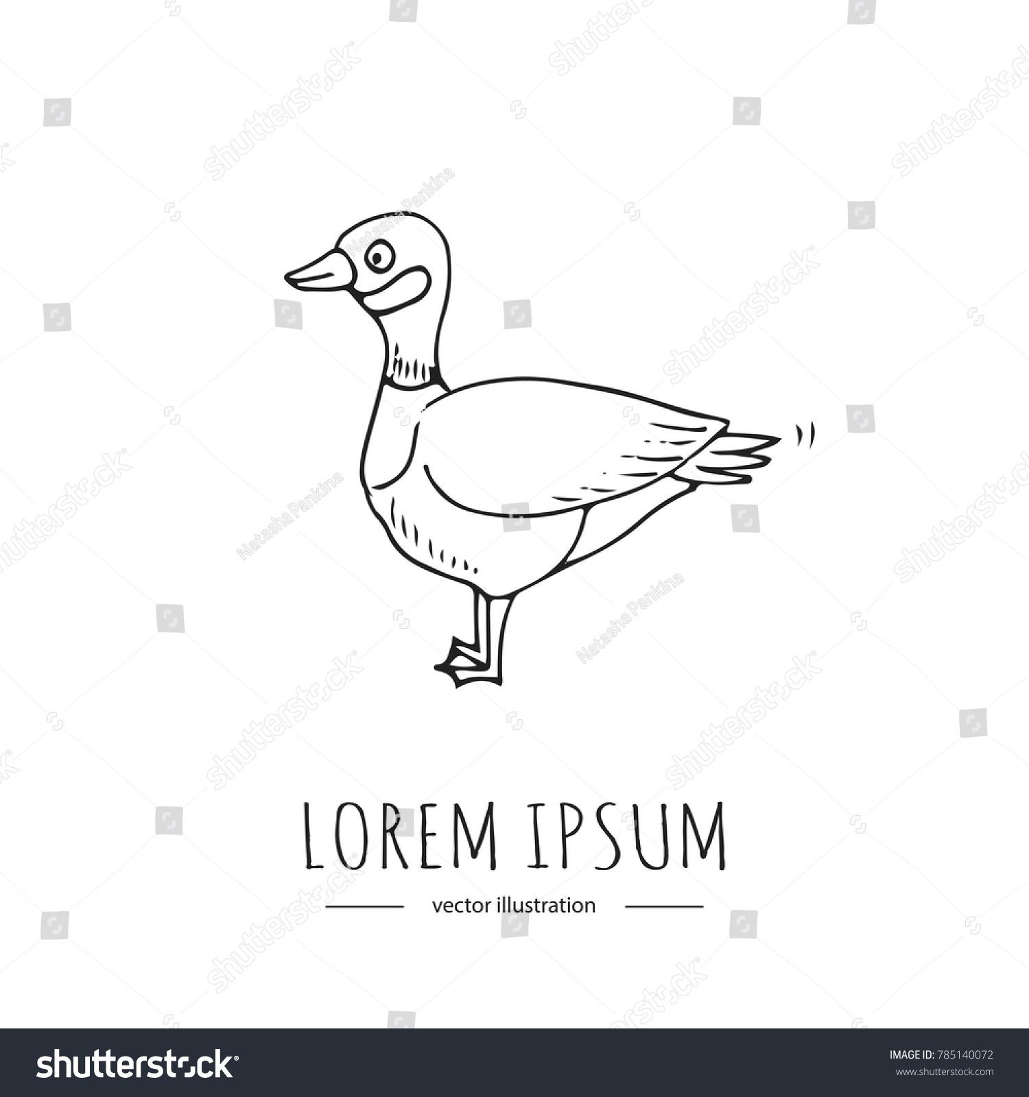 Hand drawn doodle canadian goose icon stock vector 785140072 hand drawn doodle canadian goose icon vector illustration isolated symbol on white background cartoon element bird biocorpaavc Gallery