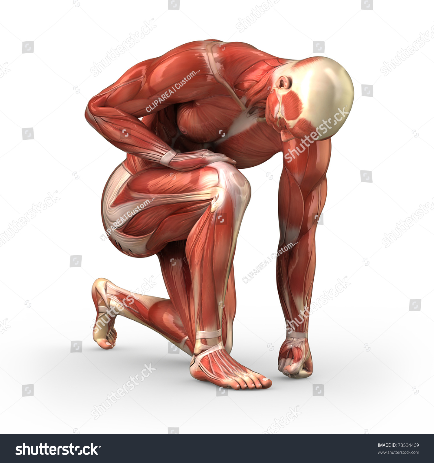 Man Without Skin Kneeling On Ground Stock Illustration 78534469