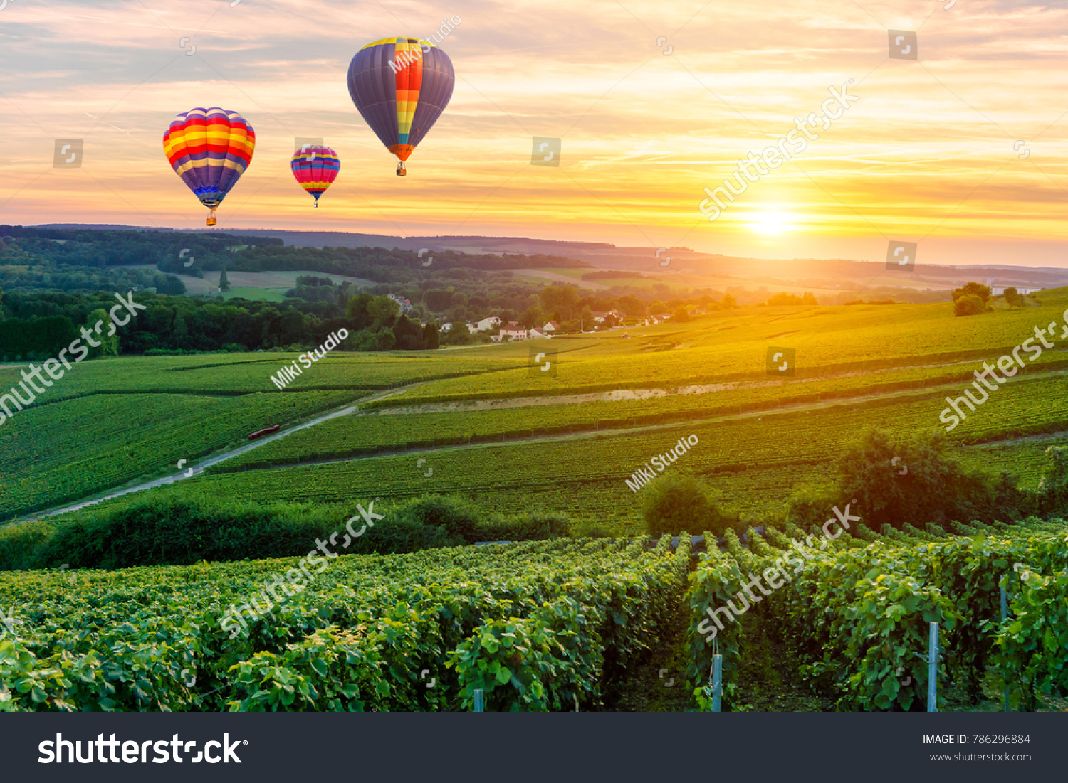 Colorful hot air balloons flying over champagne Vineyards at sunset montagne de Reims, France #786296884 - 123PhotoFree.com