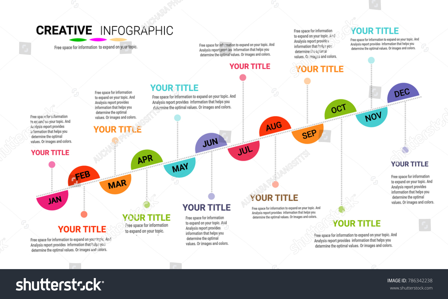 timeline display your data order infographic stock vector royalty