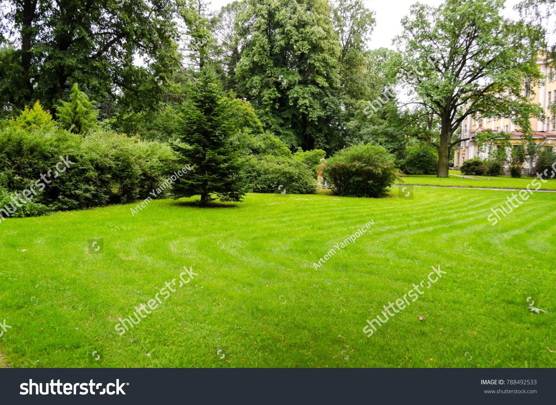 Green Decorative Garden Neutral Landscape Green Stock Photo (Royalty ...