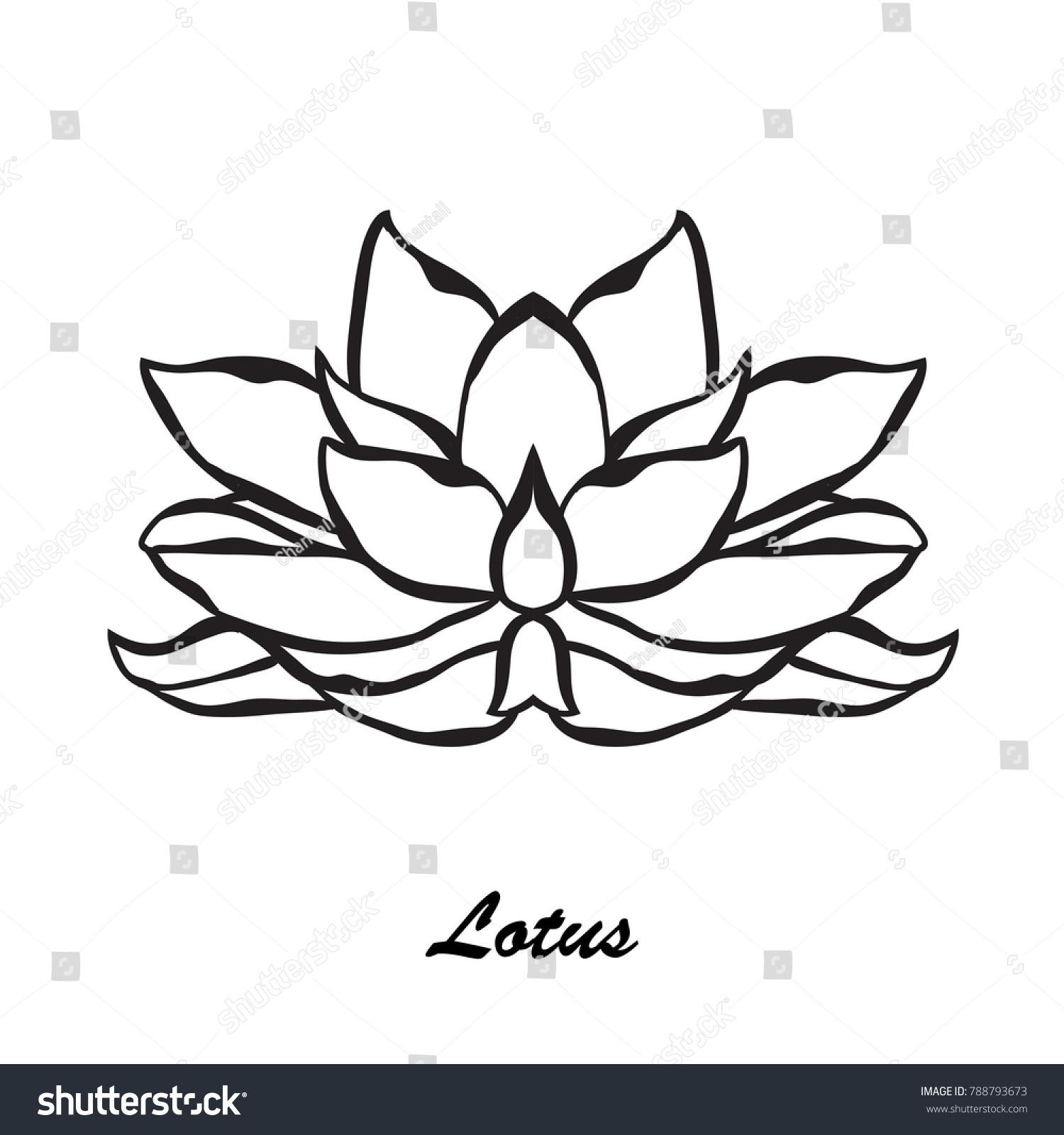 Elegant hand drawn lotus flower design stock vector 788793673 elegant hand drawn lotus flower design element floral decoration for cards invitations of izmirmasajfo