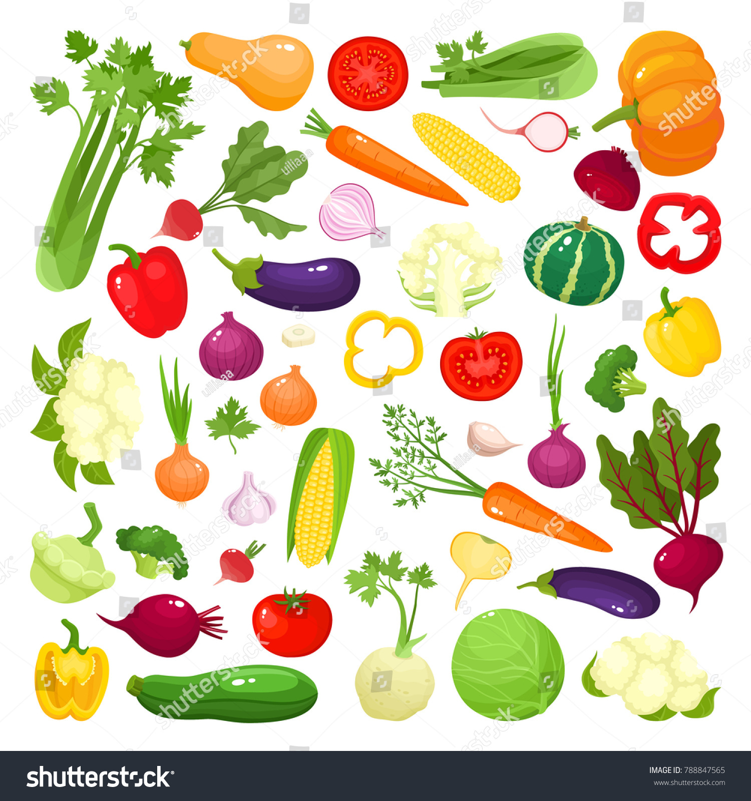 Bright vector illustration of colorful vegetables. Fresh cartoon organic vegetable isolated on white background used for magazine, book, poster, card, menu cover, web pages. #788847565