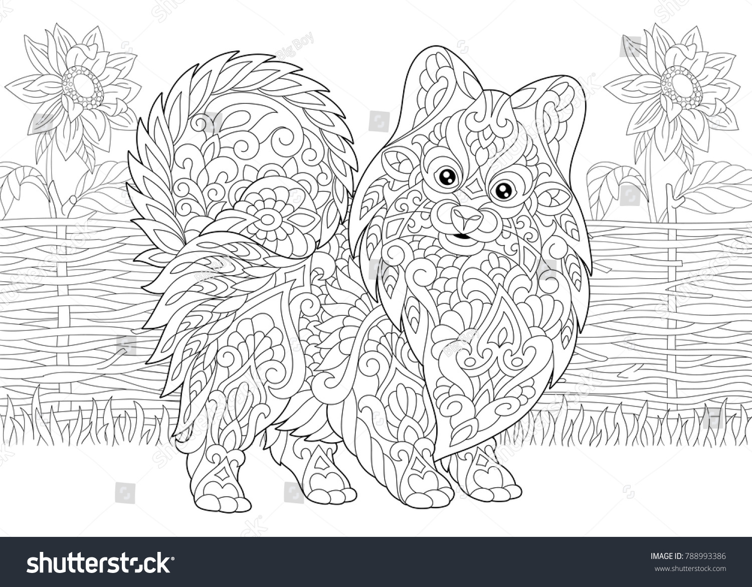 Coloring Page Adult Coloring Book Pomeranian Stock Vector (Royalty ...