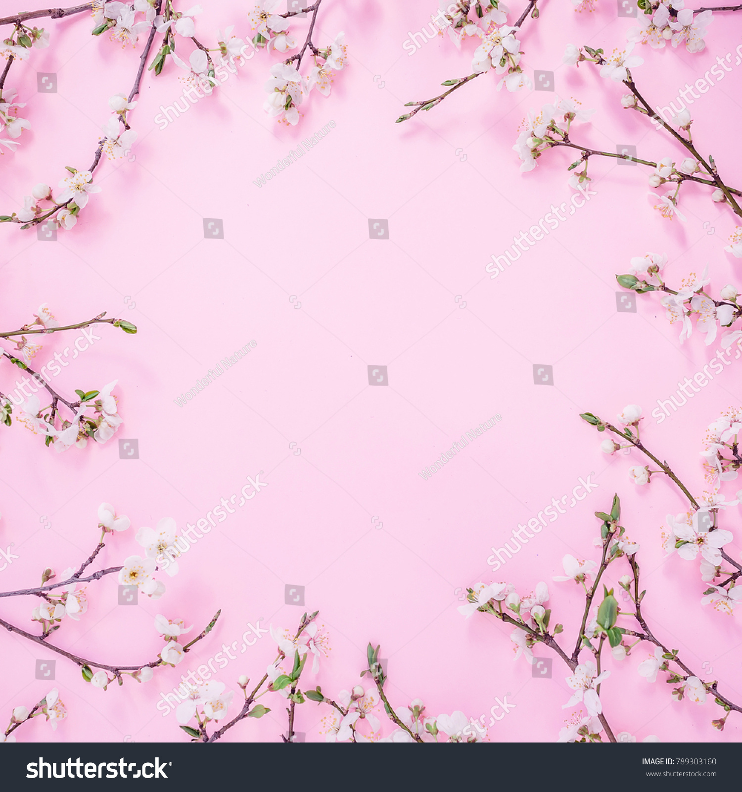 Floral Frame Spring Flowers Isolated On Stock Photo Edit Now